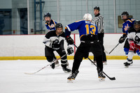 2018-01-06 Royal Puck Ups vs Harambe Hitmen at Dix Hills
